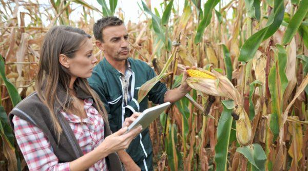Агрохимия и агропочвоведение