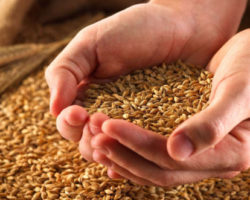 Товары сельскохозяйственного происхождения
