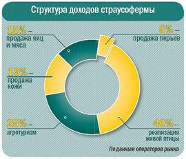 Страусоводство обеспечивает рентабельность 40–120%, а производство практически безотходно.
