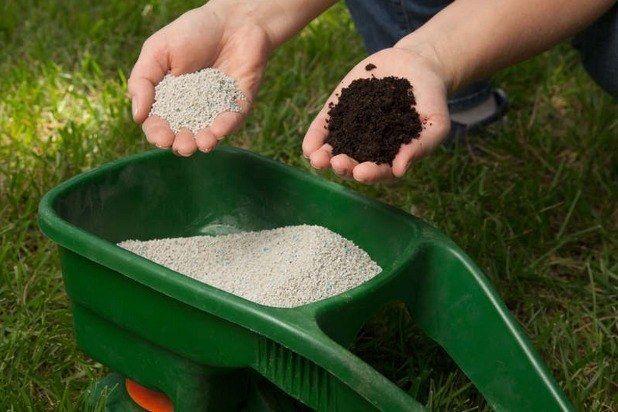 удобрения для газонной травы