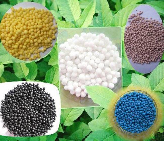 минеральные удобрения для огорода