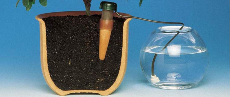 система постоянного увлажнения почвы в горшке Неомарики