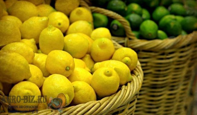 лимон в корзинке