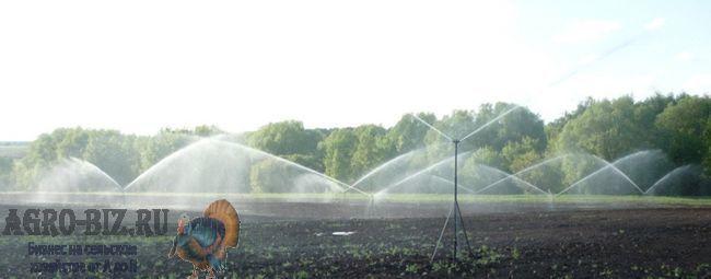 система полива полей