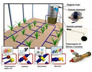 Система капельного полива схема