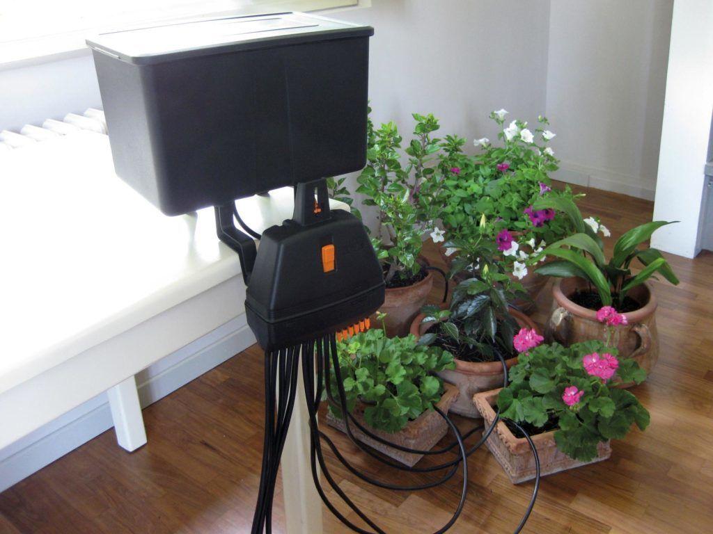 Система полива домашних растений