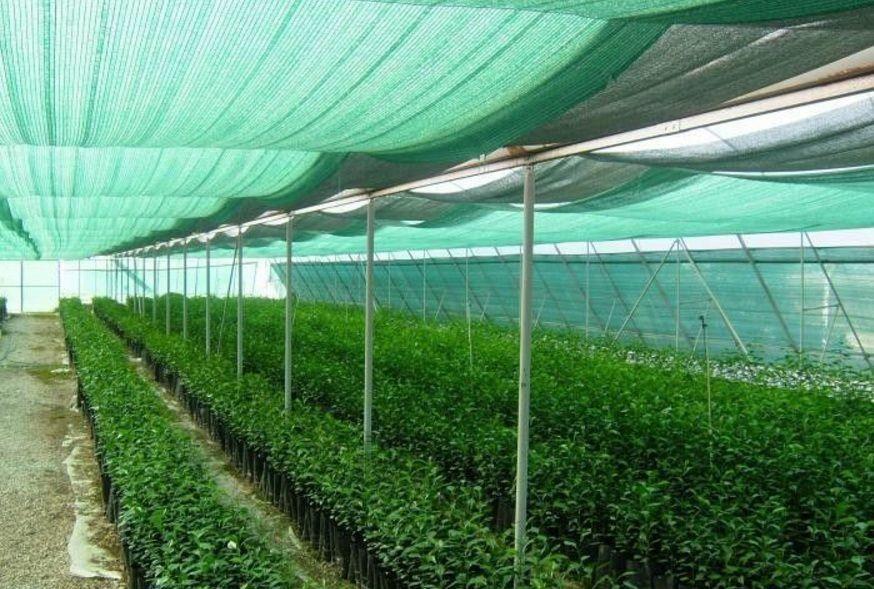 Сетка для притенение растений