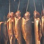 Как коптить рыбу в домашних условиях?