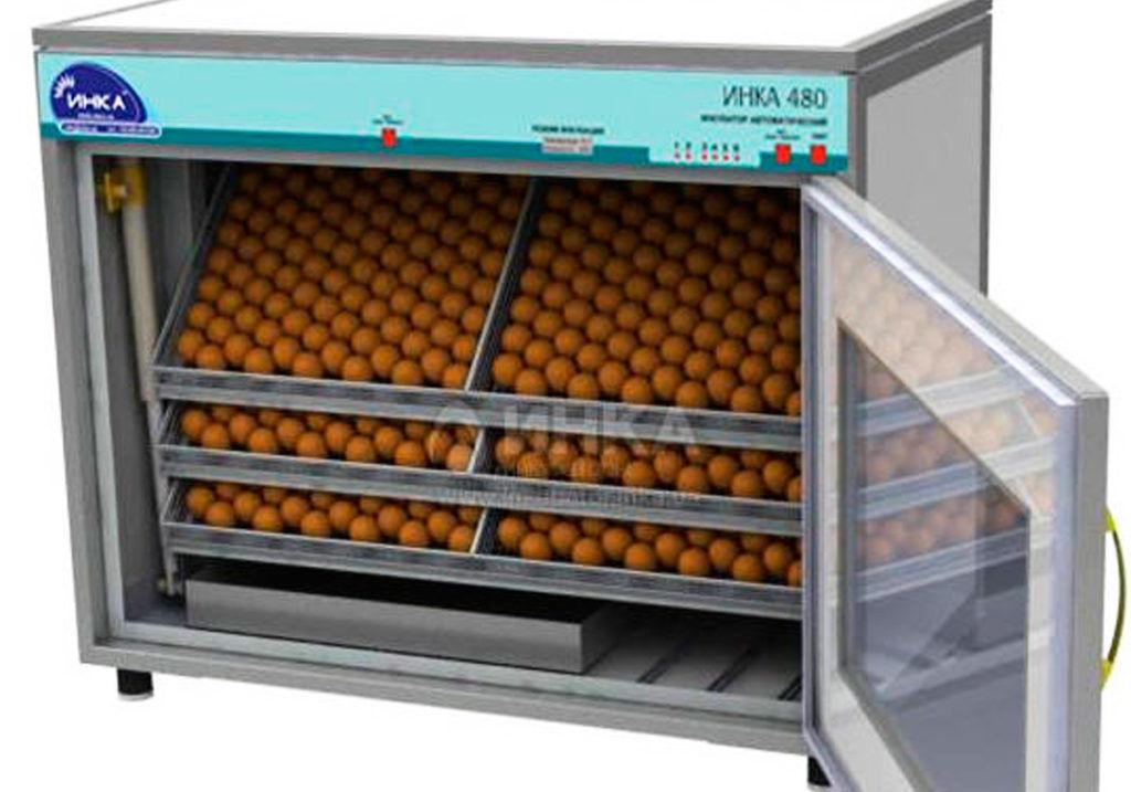 промышленные инкубаторы для перепелов