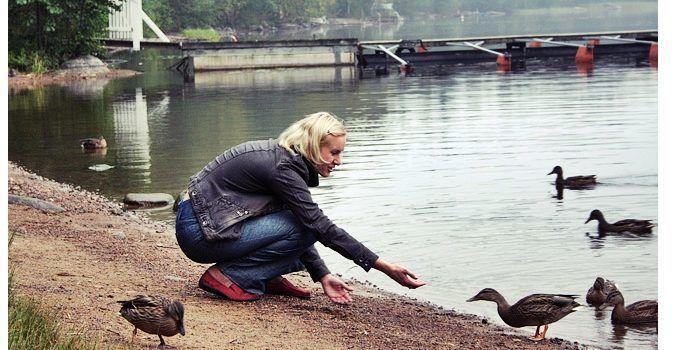 Кормление диких уток в парке