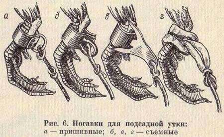 Ногавки для подсадных уток