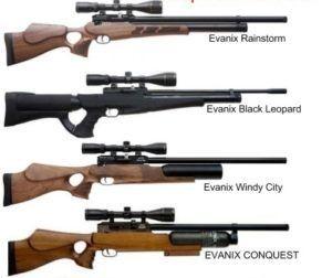 Пневматические винтовки Evanix