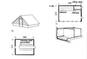 Проектирование помещений для содержания уток