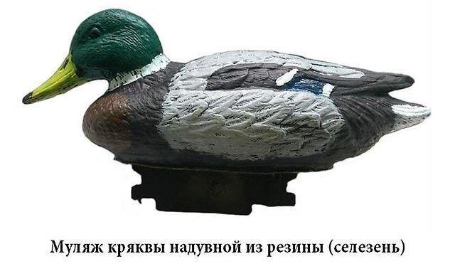 СК ПЕЛЕНГ – А.С.С. муляж кряквы надувной из резины