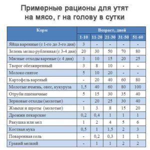 Таблица- рацион и нормы кормления утят на мясо