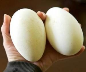 Яйца утиные инкубационные