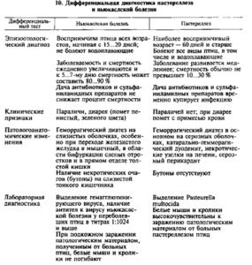 Дифференциальная диагностика пастереллеза и ньюкаслской болезни