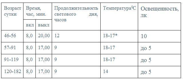 График светового и температурного режимов при откорме индюшат