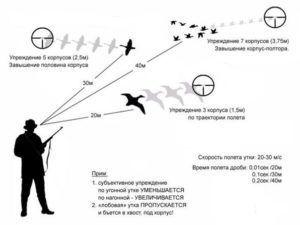Техника стрельбы по утке