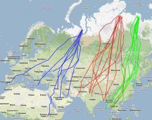 Пути миграции дикой птицы
