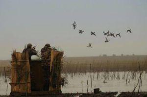 Засидка для охоты на утку осенью