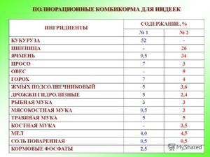 Таблица питания индеек
