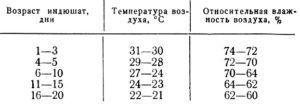Температура и влажность воздуха для индюшат