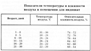 Температура и влажность воздуха в помещении для индюшат