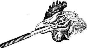 Убийство домашних птиц через клюв