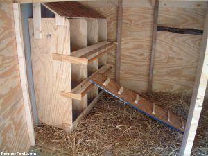 Гнезда для несушек