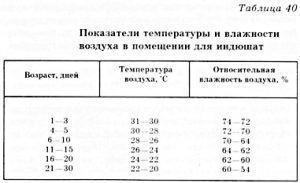 Показатели температуры и влажности воздуха для индюшат