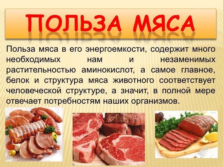 Польза мяса