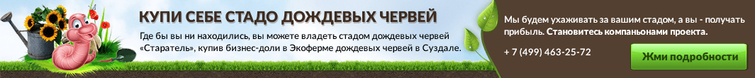 ecopolis-po.ru