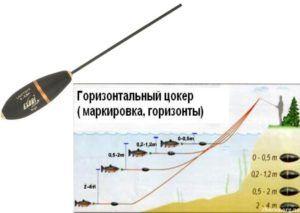 Как правильно ловить форель на сбирулино
