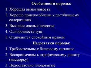 Особенности породы Дюрок