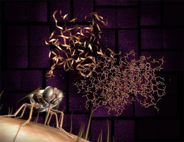 Стерилизация насекомых