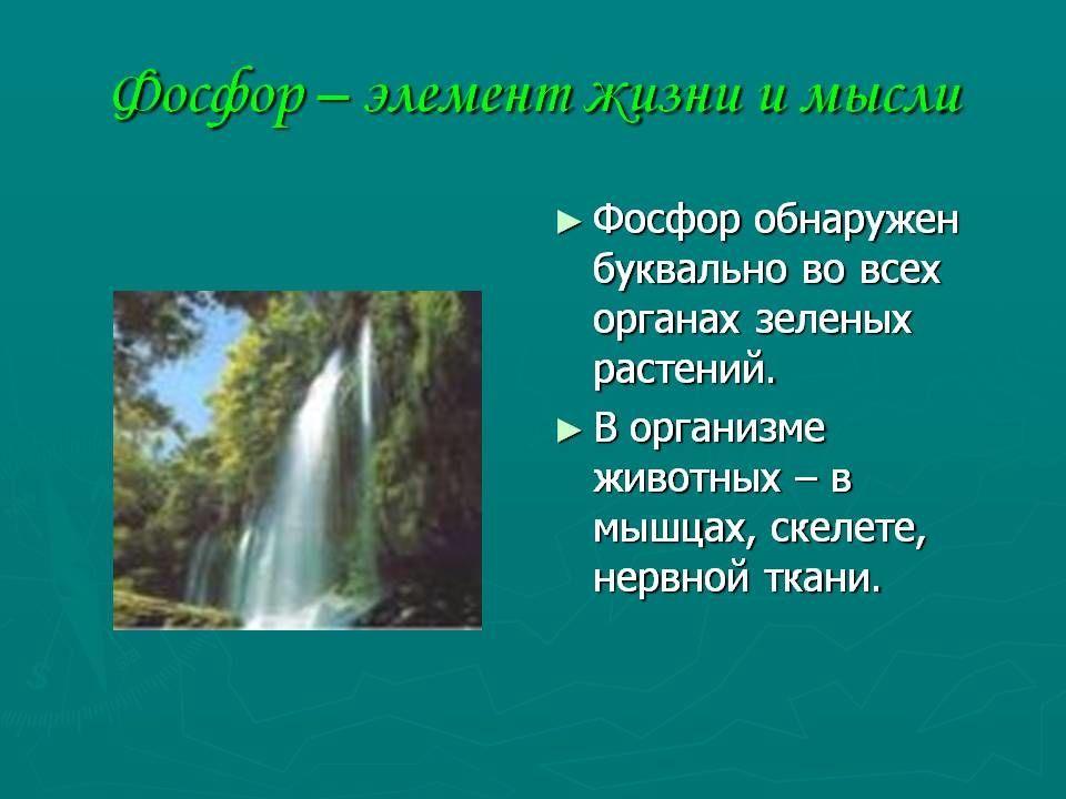 Значение фосфора