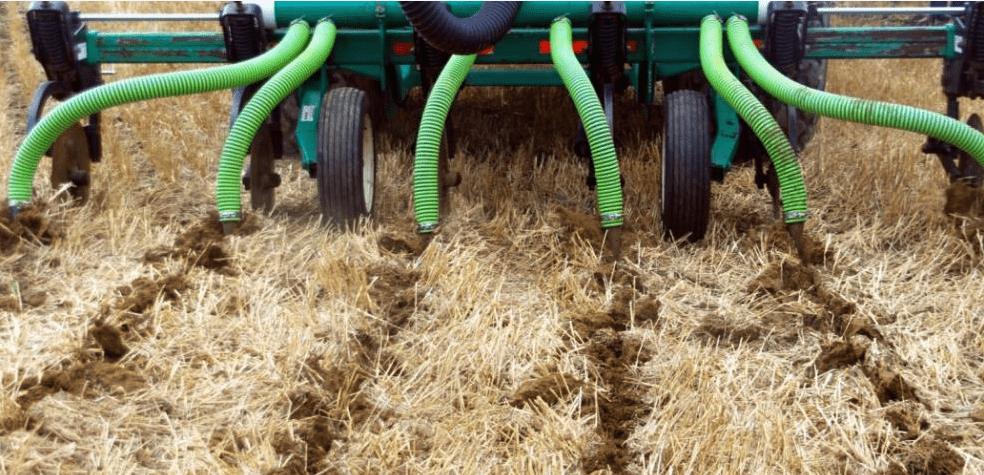 Внесение навоза и прочих удобрений на уровень корнеплода