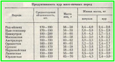 Таблица порода кур