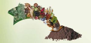 Кухонная органика