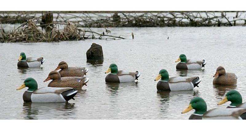 Flambeau Storm Front Duck (комплект на воде)