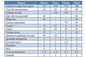 Нормы и рацион кормления уток мулардов