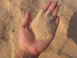 Песок для заполнения зоба утки