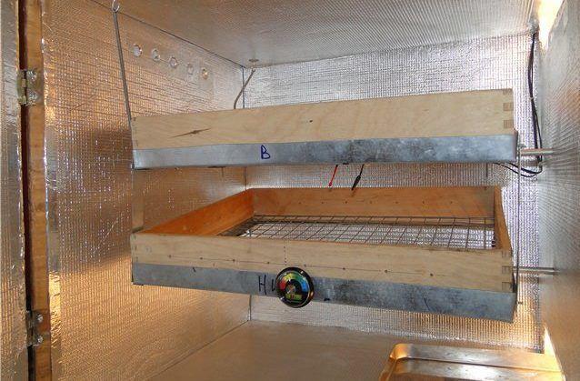 Самодельный инкубатор (вид изнутри)