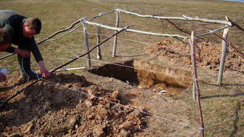 Сооружение шалаша для охоты в поле