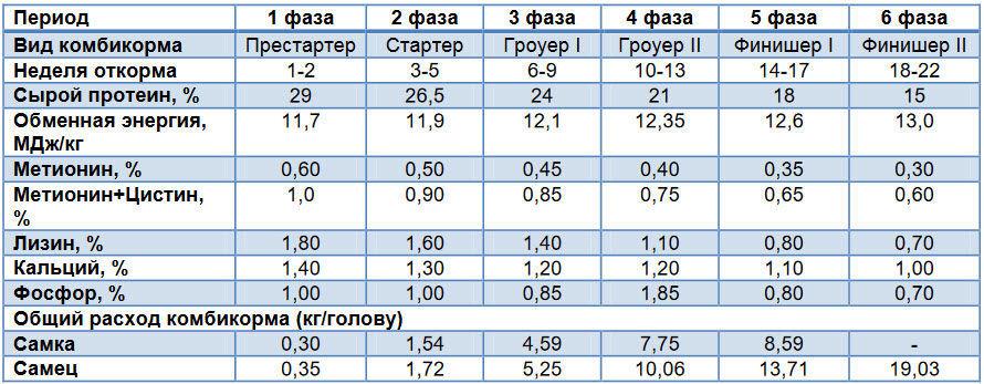 Питательные вещества и расход корма на откорме индеек при 6-фазовой кормовой программе