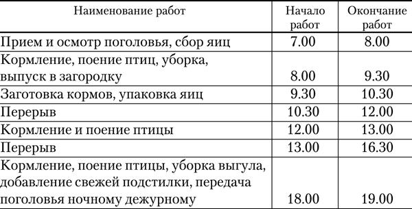 Расписание работ в утятнике