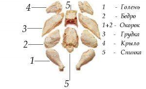 Схема разделки тушки