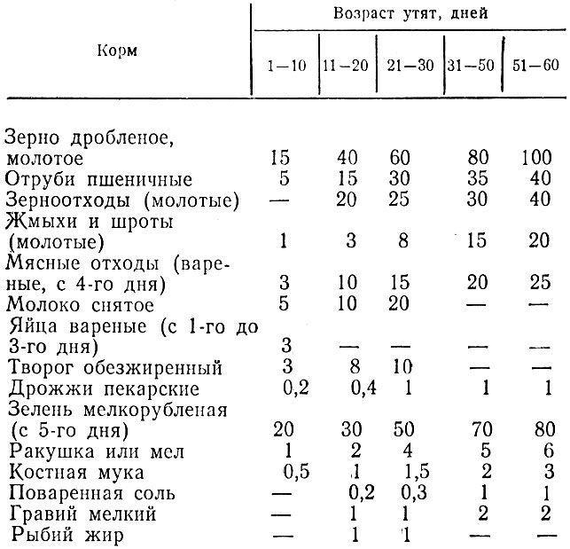 Таблица кормления несушек