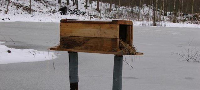 Гнездо-ящик